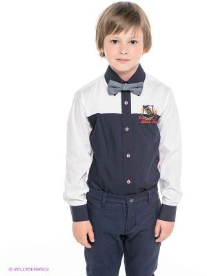 Рубашка Ilgaz kids. Цвет: темно-синий, белый