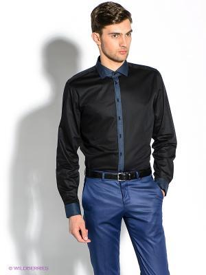 Рубашка Strellson. Цвет: черный, синий