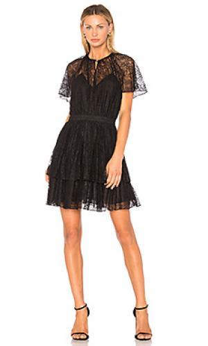 Кружевное мини-платье plume Lover. Цвет: черный