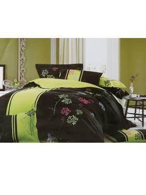 Комплект постельного белья 4 предмета HAMRAN. Цвет: коричневый, розовый, салатовый