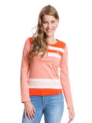 Лонгслив U.S. Polo Assn.. Цвет: оранжевый