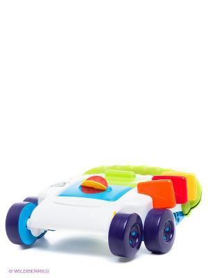 Игрушка Ходунки-каталка Little Tikes. Цвет: белый, зеленый, синий