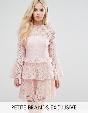 John Zack Petite Кружевное платье мини с рукавами клеш. Цвет: розовый