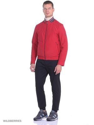 Куртка Malinardi. Цвет: бордовый