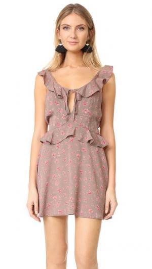 Платье Mimi Flynn Skye. Цвет: сладкий горошек