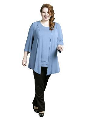 Блузка Queen Size. Цвет: голубой