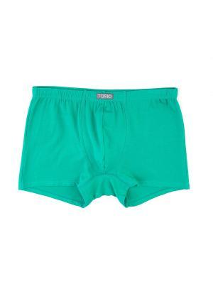 Трусы мужские шорты TORRO. Цвет: зеленый