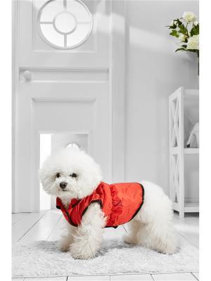 Теплый жилет на кнопках для средних пород собак весом 7-12 кг и длиной спинки около 40 см Nothing but Love. Цвет: красный, оранжевый, черный