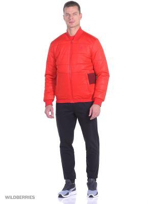 Куртка Ferrari Padded Jacket Puma. Цвет: красный