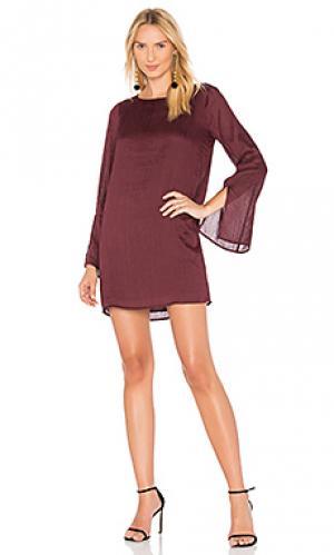 Платье-футляр philipa Line & Dot. Цвет: фиолетовый