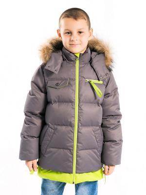 Куртка Игорь Аксарт. Цвет: салатовый, темно-серый