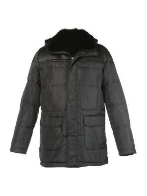 Куртка Mirage-MV. Цвет: темно-серый