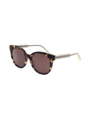 Солнцезащитные очки Bottega Veneta. Цвет: коричневый, светло-коричневый, темно-коричневый
