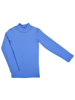 Джемпер WOW. Цвет: голубой