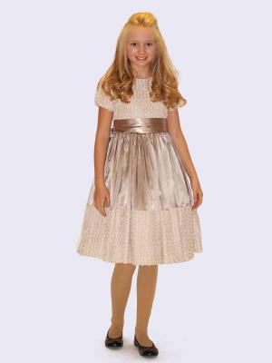 Платье Каприсия Shened