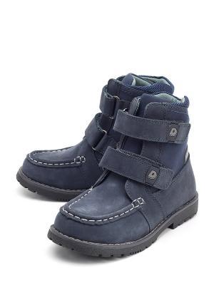 Ботинки DITOP. Цвет: синий