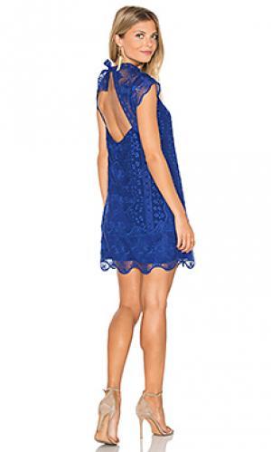 Платье aleigha SAYLOR. Цвет: королевский синий