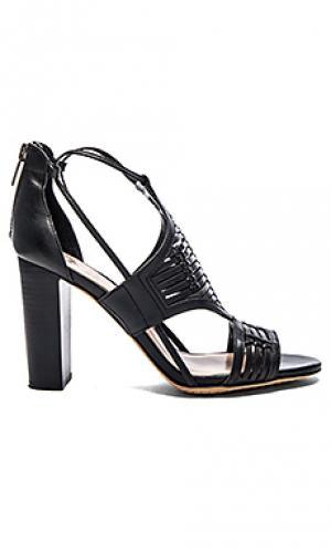 Обувь на каблуке ceara Vince Camuto. Цвет: черный