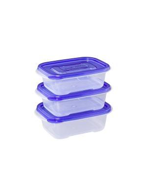 Набор из 3-х прямоугольных контейнеров XEONIC CO LTD. Цвет: синий, прозрачный