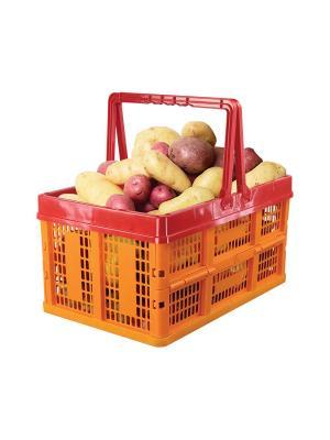 Ящик универсальный раскладной Альтернатива. Цвет: зеленый, салатовый, красный, оранжевый