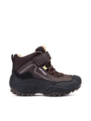 Ботинки GEOX. Цвет: коричневый, бежевый