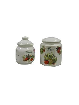 Набор из 2-х банок чай+ печенье Овощи Sestesi. Цвет: белый