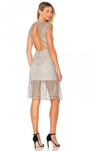 Платье с металлическим отливом breonne SAYLOR. Цвет: металлический серебряный