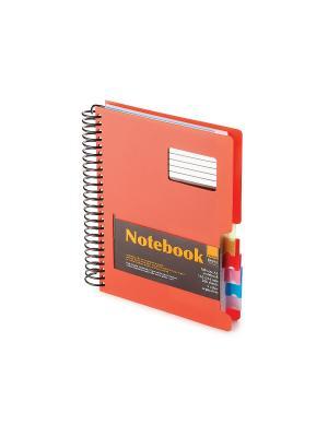 Бизнес-блокнот-1 а5, 200 л. гр., разделители,пластиковая обл. ultimate basics , красный Альт. Цвет: красный