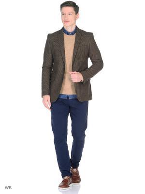 Пиджак PELEGRINNI. Цвет: коричневый