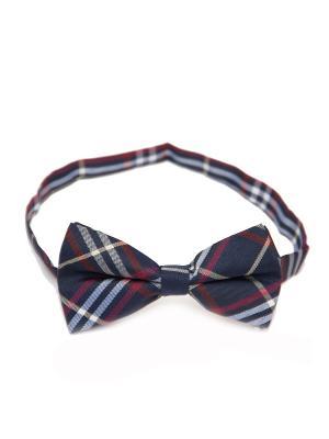 Галстук-бабочка Churchill accessories. Цвет: темно-синий, синий, темно-бордовый, темно-красный, красный, белый, черный