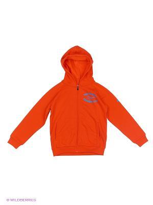 Толстовка BOYS FULL ZIP HOODIE ASICS. Цвет: оранжевый