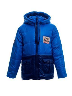 Куртка Bonito kids. Цвет: темно-синий, лазурный