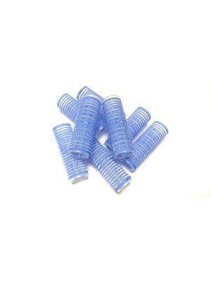 Набор  Бигуди 20 мм (8 шт.) Scarlet Line. Цвет: голубой