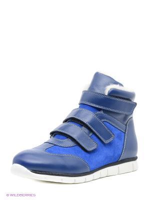 Ботинки San Marko. Цвет: голубой