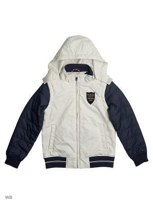 Куртка Tommy Hilfiger. Цвет: темно-синий, белый