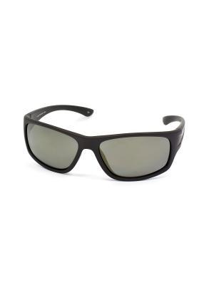 Солнцезащитные очки Legna. Цвет: зеленый, черный