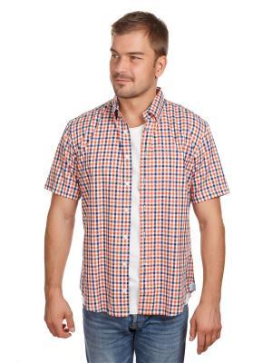 Рубашка Oxford McNeal. Цвет: оранжевый
