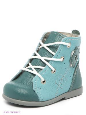 Ботинки Детский скороход. Цвет: голубой, зеленый