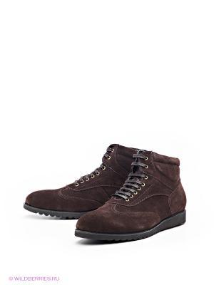 Ботинки Svetski. Цвет: темно-коричневый