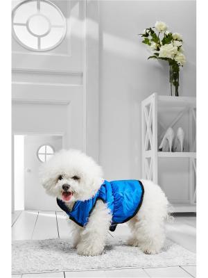 Теплый жилет на кнопках для средних пород собак весом 7-12 кг и длиной спинки около 40 см Nothing but Love. Цвет: синий, оранжевый, черный