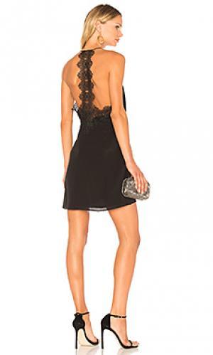 Шелковое платье the ainsley CAMI NYC. Цвет: черный