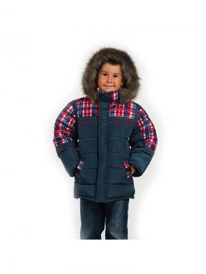 Куртка для мальчика Шотландец Пралеска. Цвет: темно-синий, темно-серый