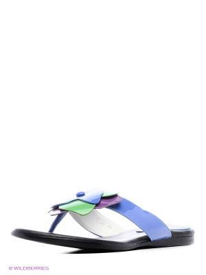 Пантолеты Vitacci. Цвет: зеленый, фиолетовый, синий