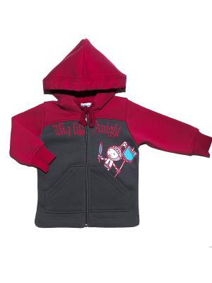 Куртка Бимоша. Цвет: бордовый