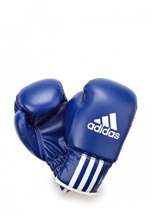 Перчатки боксерские adidas Combat. Цвет: синий