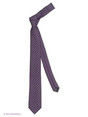 Галстуки KARFLORENS. Цвет: фиолетовый