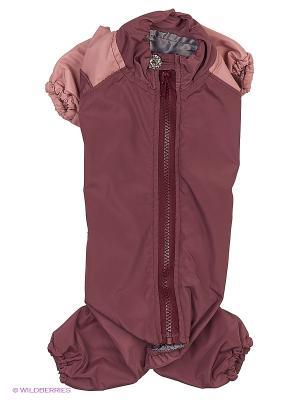 Комбинезон холодный на шелке (Мальтийская болонка) ТУЗИК. Цвет: фиолетовый