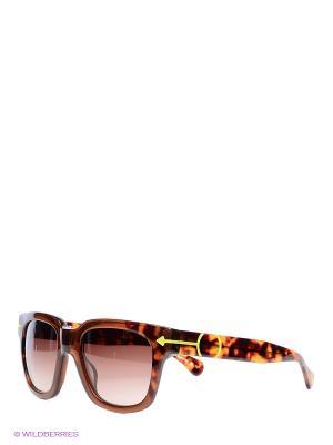 Очки солнцезащитные TM 529S 01 Opposit. Цвет: коричневый