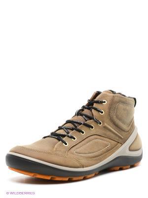 Ботинки ECCO. Цвет: бежевый
