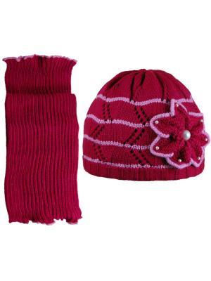 Шапка и шарф Grans. Цвет: темно-фиолетовый